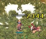 2008.7.4.3.jpg